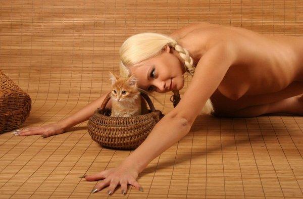 kitten.02.jpg