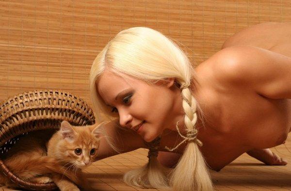 kitten.03.jpg